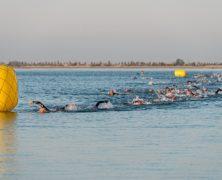 natació Ironcat 2018